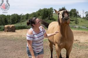 fun_with_horses
