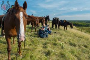 enviroFoto-curious-horse