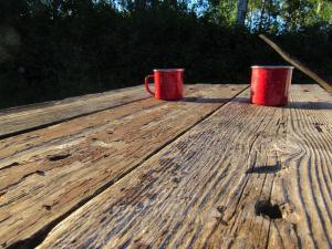 Gunn Lake Camp