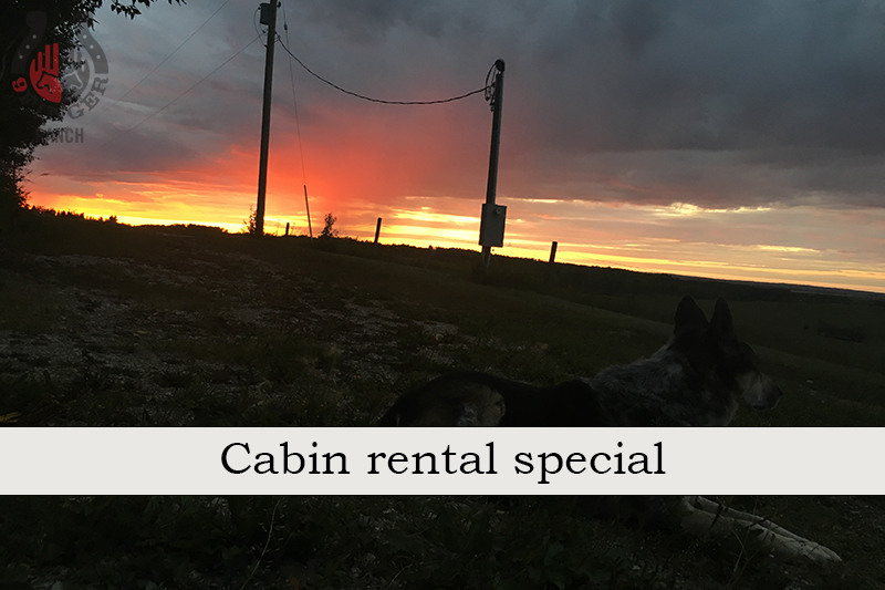 Special: Cabin rental in June