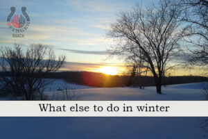 What else to do – Winter edition