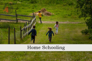 Homeschooling avec 9 Finger Ranch