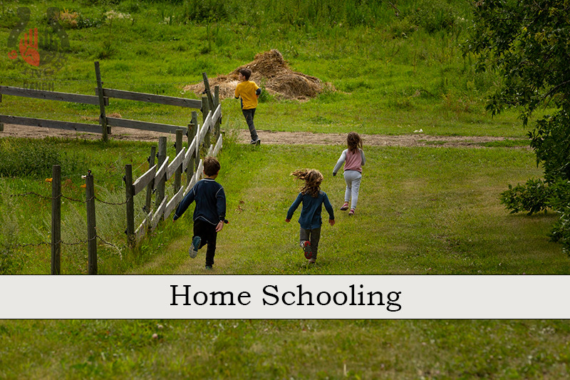 Home schooling on our ranch