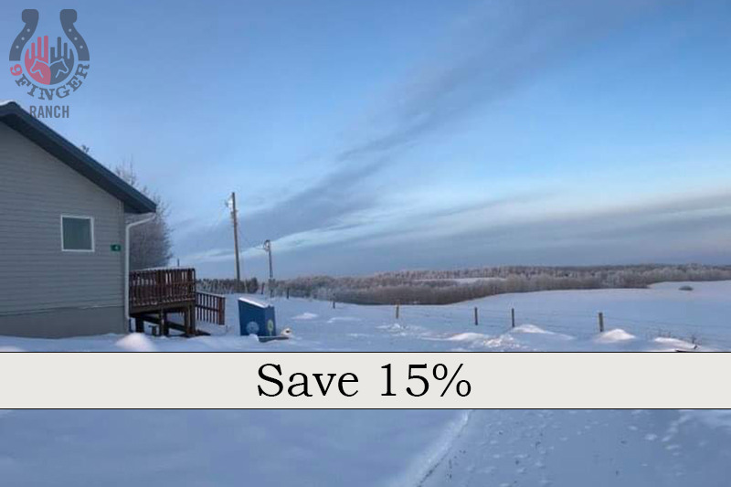 Cabin rental: Winter & Spring special 2021