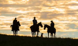 9 Finger Ranch_1393©Enviro Foto