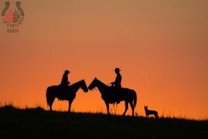 enviroFoto-sunset