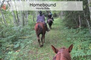 Feat-Homebound