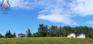 ranch-house-and-cabins-field-view